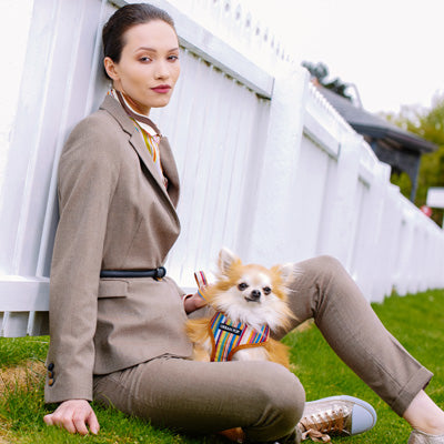Henley Striped Tan Harness by Urban Pup Chihuahua Clothes and Accessories at My Chi and Me