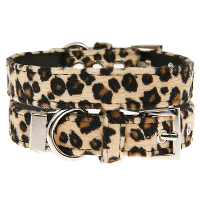 Leopard Print Collar by Urban Pup Chihuahua Clothes and Accessories at My Chi and Me