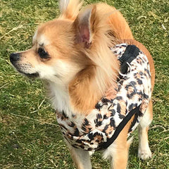 Leopard Print Water Resistant Padded Gilet Style Coat Chihuahua or Small Dog