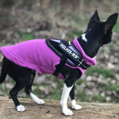 Chihuahua or Small Dog Fleece Jumper with D Rings For Leash Lilac Chihuahua Clothes and Accessories at My Chi and Me
