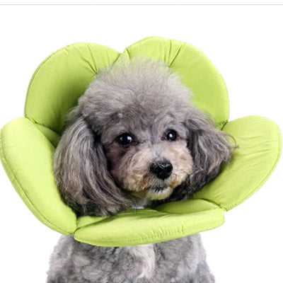 Post Surgery Soft Flower Collar Lime Green