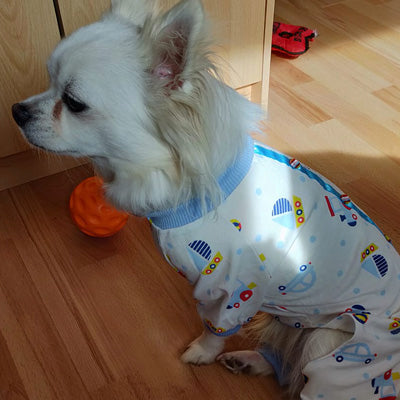 Chihuahua Small Dog Pyjamas Onesie Style Blue Transport Print Cotton