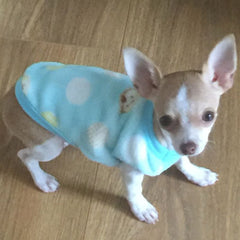 Chihuahua Puppy Fluffy Turquoise Vest with Monkey and Spot Motifs Chihuahua Clothes and Accessories at My Chi and Me