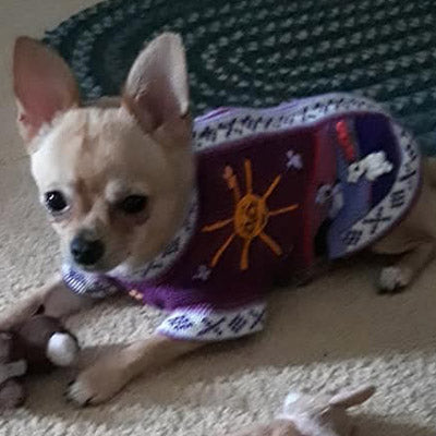 purple peruvian hand embroidered wool dog jumper
