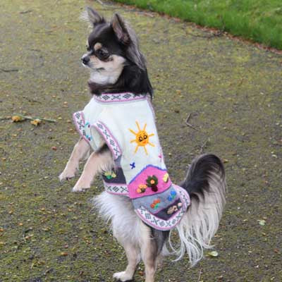 Size 3 Hand Embroidered Peruvian Dog Jumper Cream Pink and Grey 26cm - My Chi and Me
