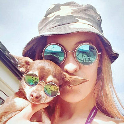 Sunglasses in 7 Colours for Chihuahuas and Puppies Small 7 COLOURS Chihuahua Clothes and Accessories at My Chi and Me