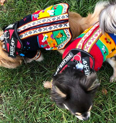 Size 4 Hand Embroidered Peruvian Dog Jumper Red Yellow Blue and Green 27cm Chihuahua Clothes and Accessories at My Chi and Me