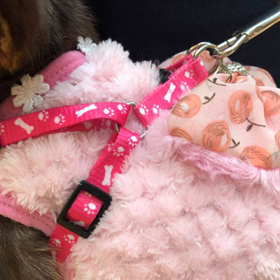 Chihuahua Puppy or Small Chihuahua Harness and Lead Set Paws & Bones Pink Light Weight Webbing Chihuahua Clothes and Accessories at My Chi and Me