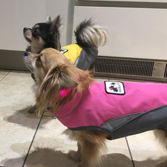 chihuahua or small dog waterproof fleece lined pink and grey or yellow and grey dog coat with reflective panels