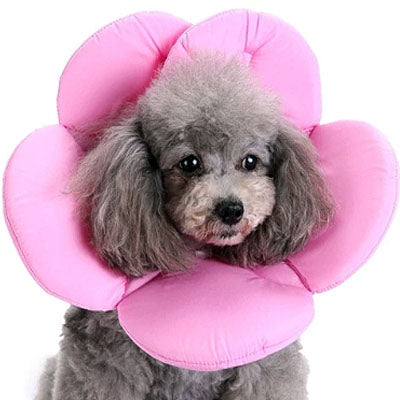 Post Surgery Soft Flower Collar Pink