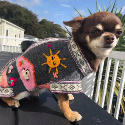 Size 5 Hand Embroidered Peruvian Dog Jumper Grey and Pink 27cm Chihuahua Clothes and Accessories at My Chi and Me