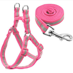 pink reflective harness and lead set with fully adjustable straps and matching leash for chihuahuas and small dogs