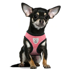Breathable Mesh Chihuahua or Small Dog Harness and Lead Set Pink - 2 SIZES Chihuahua Clothes and Accessories at My Chi and Me
