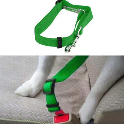 Premium Dog Seat Belt With Clip Green Chihuahua Clothes and Accessories at My Chi and Me