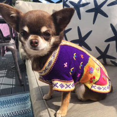 Size 3 Hand Embroidered Peruvian Dog Jumper Purple Brights 24cm Chihuahua Clothes and Accessories at My Chi and Me