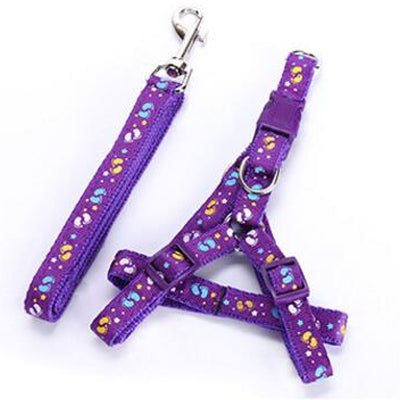 Chihuahua Harness and Lead Set PURPLE BONES Medium Weight Webbing Chihuahua Clothes and Accessories at My Chi and Me