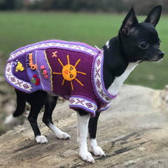 Size 2 Hand Embroidered Peruvian Dog Jumper Purple 23cm