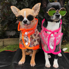 Pink Waterproof Raincoat for Chihuahuas and Small Dogs - 3 SIZES Chihuahua Clothes and Accessories at My Chi and Me
