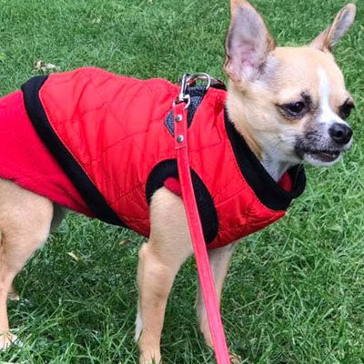 Water Resistant Padded Quilted Red Dog Gilet