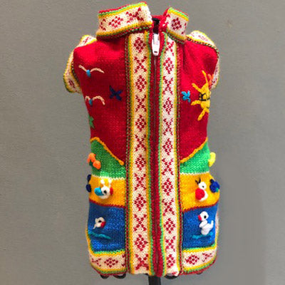 Hand Embroidered Peruvian Dog Jumper Red Yellow Blue and Green