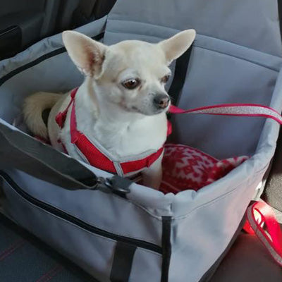 Premium Portable Folding Travel Car Seat Grey Mesh Sides Chihuahua Clothes and Accessories at My Chi and Me