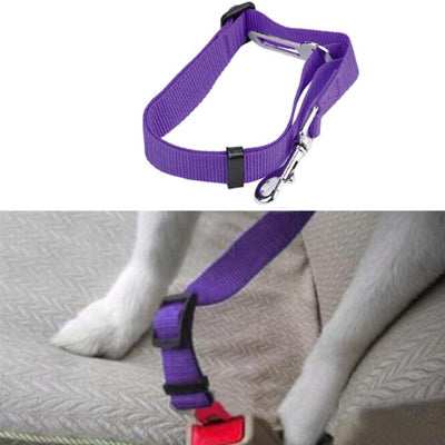 Dog Seat Belt With Clip Purple
