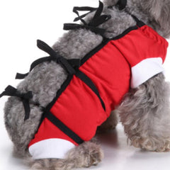 Surgery Suit for Small Dogs Post Surgery Wound Protection Red Chihuahua Clothes and Accessories at My Chi and Me