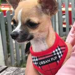 Red Tartan Harness by Urban Pup Chihuahua Clothes and Accessories at My Chi and Me