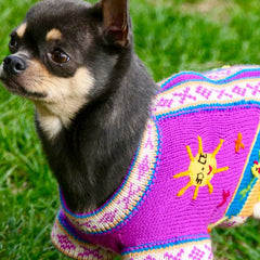 Size 4 Hand Embroidered Peruvian Dog Jumper Violet 30cm