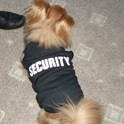 Security Vest T-Shirt Chihuahua Small Dog Chihuahua Clothes and Accessories at My Chi and Me
