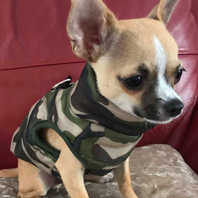 Premium Gilet Style Dog Coat Water Resistant Padded Green Camouflage Jacket Chihuahua Clothes and Accessories at My Chi and Me