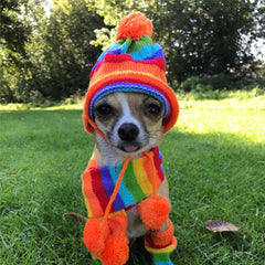 Chihuahua Hat Scarf and Leg Warmer Set Rainbow Stripes Chihuahua Clothes and Accessories at My Chi and Me