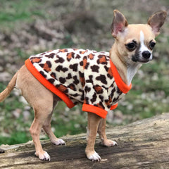 Chihuahua Puppy Fleece Leopard Print With Orange - 4 SIZES Chihuahua Clothes and Accessories at My Chi and Me
