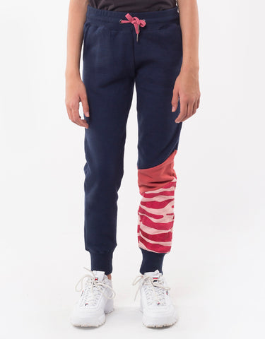 Zebra Panel Trackie- Navy & Holly Berry