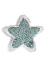 FAV 43 - Star Mint cushion
