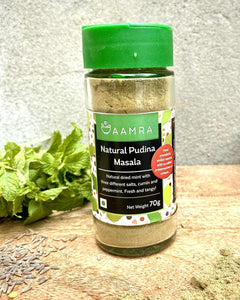 Natural Pudina Masala