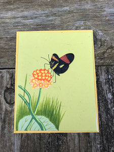 Single Greeting Card Butterfly Light Green - Ellie Poo