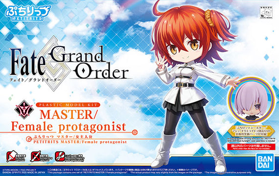 "Petitrits Master Female Protagonist ""Fate Grand Order"""
