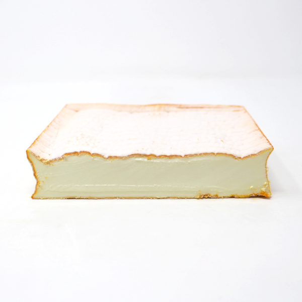 Soft cheese Brebirousse D'Argental Sheep - Cured and Cultivated