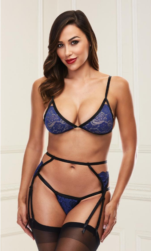 Gorgeous blue bra and garter belt set