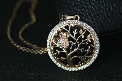 Teacher Owl Necklace with Crystal Bezel