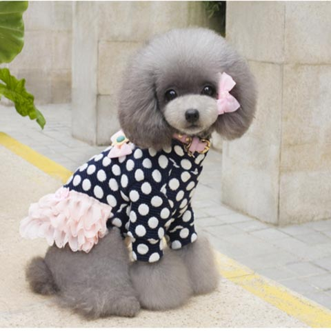 dogestyles-black-polka-dot-dog-dress