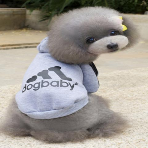 dogestyles-grey-hoodie-dog-jumper-back