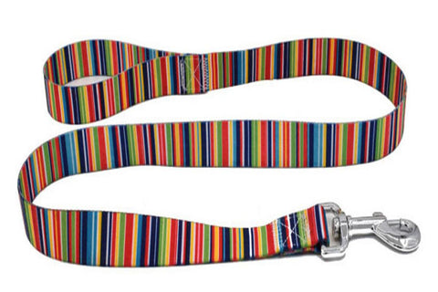 dogestyles-rainbow-coloured-nylon-dog-leash