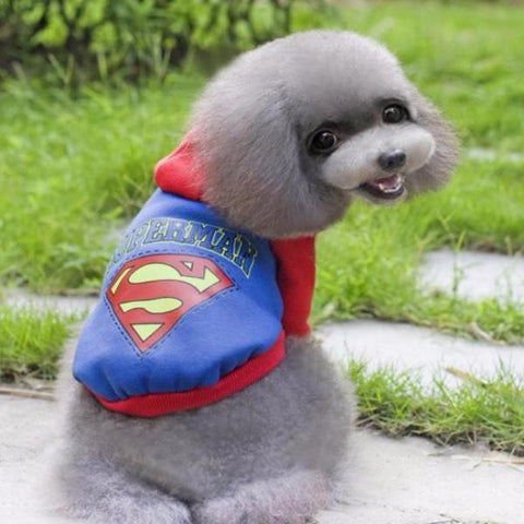 dogestyles-superman-dog-jumper-back