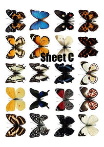 Butterfly cake and Cupcake toppers, Multicoloured, Birthdays, Easter, Sheet C