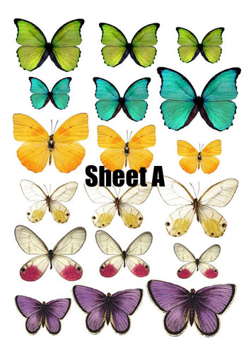 Butterfly cake and Cupcake toppers, Multicoloured, Birthdays, Easter, Sheet A