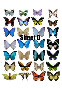 Butterfly cake and Cupcake toppers, Multicoloured, Birthdays, Easter, Sheet D