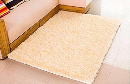 Super Soft Shag Rug