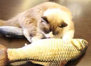 Cute Funny Realistic Lifelike Fish Cat or Kitten Toy Pillow with Catnip (Variety of Species, Colors, Sizes) FREE SHIPPING